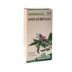 GEMMOSOL 13 BETULLA LINFA 50ML