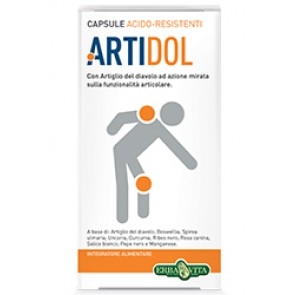 ARTIDOL GEL 100 ML