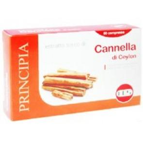 CANNELLA ESTRATTO SECCO 60 COMPRESSE