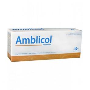 AMBLICOL 14 FLACONCINI 10 ML