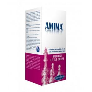 AMIMA 12 BUSTINE