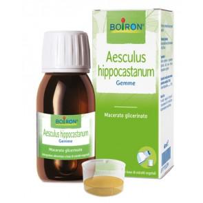 AESCULUS HIPPOCASTANUM MACERATO GLICERICO 60 ML INT